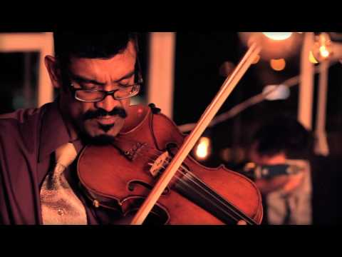 (HD) LE CHAT LUNATIQUE / SONGE D'AUTOMNE : AMPLIFICADO (NEW MÉXICO,USA) mp3