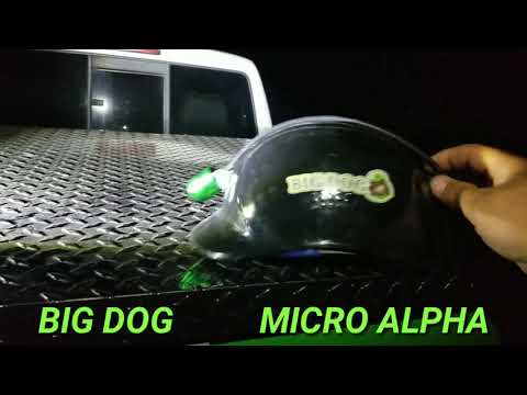 THE NEW BIG DOG MICRO ALPHA