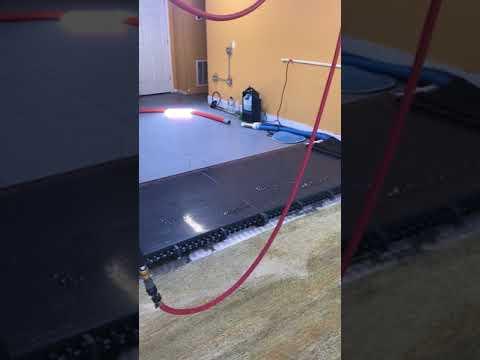Making rug clean, fresh and like new again!