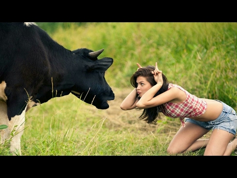 A cure for mad cow disease