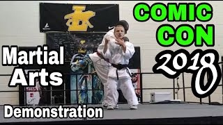 Comic Con Martial Arts Demonstration