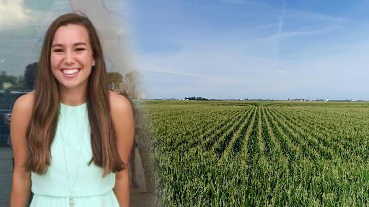 search for missing iowa woman mollie tibbetts expands to cornfields