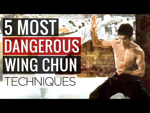 5 MOST DANGEROUS Wing Chun Techniques & Martial Arts Moves for Self Defense
