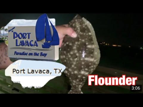 Pier Fishing{Port Lavaca Tx}!