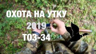 Охота на утку осень 2019 с тоз-34