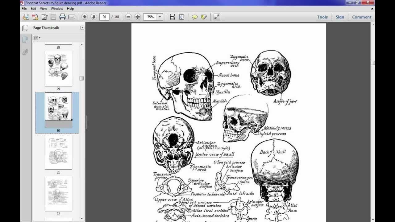 Shortcut secrets of figure drawing