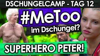Dschungelcamp 2019 - Tag 12: SUPERHERO Peter! Evelyn wehrt sich gegen Yotta!