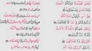 Surah Al Waqia Recitation by Abu Hafs Jamat Ud Dawah