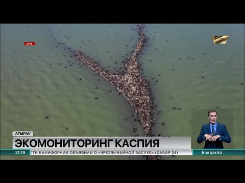 Работы по углублению дна Каспийского моря обсудили на совещании в Атырауской области