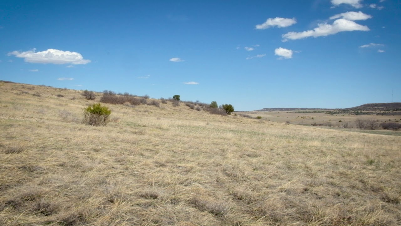 Sold by Compass Land USA - 0.19 Acres Colorado City property video