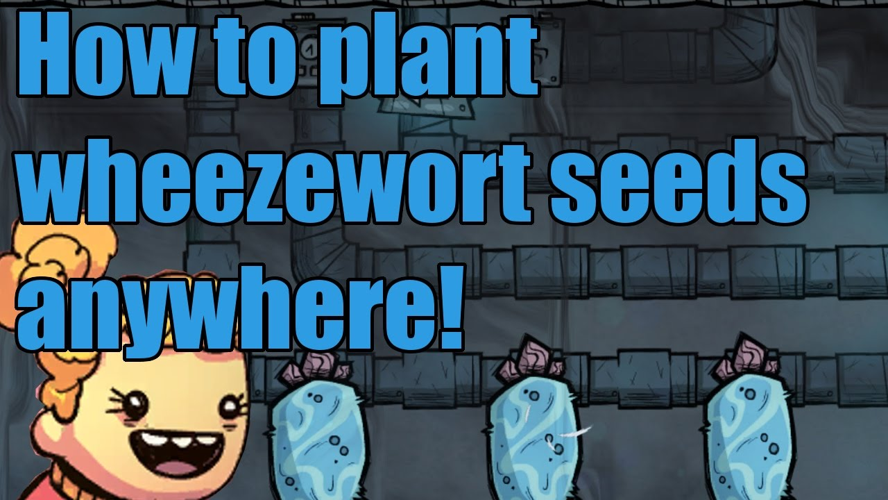 How To Plant Wheezewort Seeds Anywhere You Want! Oxygen Not Included  Tutorial Thermal Upgrade