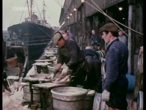 British Icelandic Cod Wars