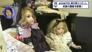 2016年5月 鎌倉路地フェスタ TVK「猫のひたいほどワイド」