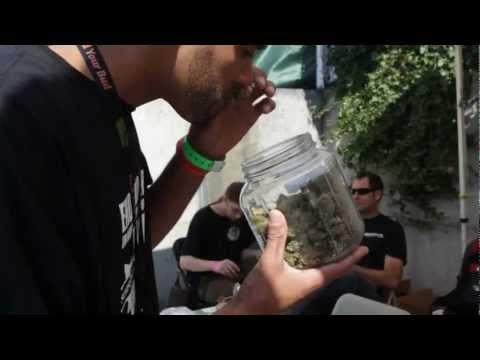HIGH TIMES Medical Cannabis Cup in Seattle - Day One