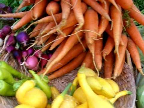 Faith Mountain Farm at the Watauga County Farmers Market