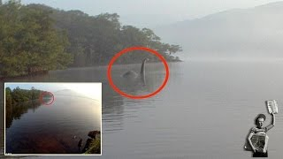 Is this the Loch Ness monster? Creature photographed in lake