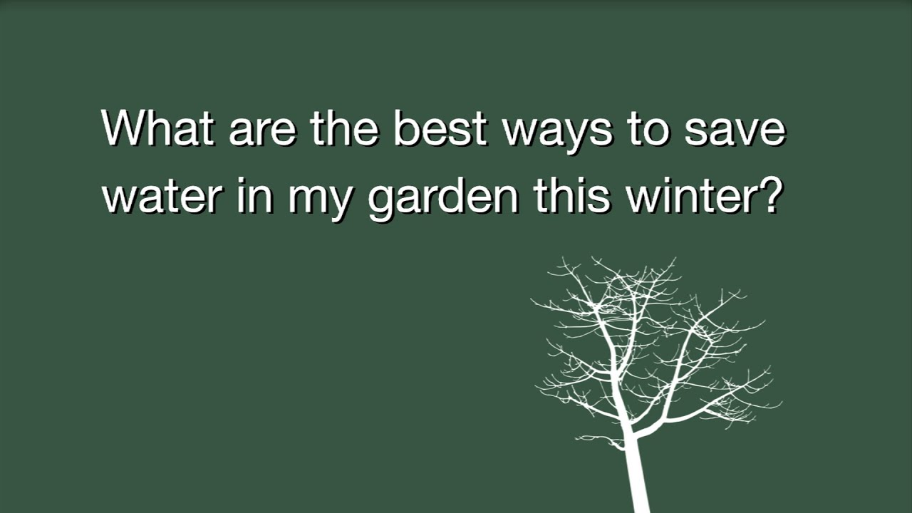What are the best ways to save water in my garden this winter youtube - Ways saving water watering garden ...