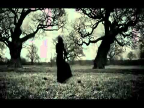 mehad hamed  bautyfull song