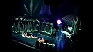 Phish - Fluffhead / Antelope - 12/29/93 - New Haven, CT