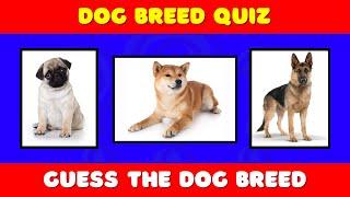 Dog Breeds Quiz | Guess the Dog Breeds | Dog Quiz
