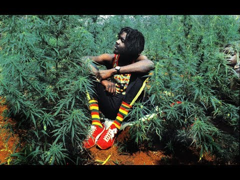 🔥 One Hour Of The Best Reggae Roots Songs🌱 (Mix By Felix Godin 🌟)