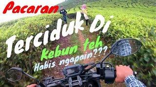 Terciduk!!!   Pacaran dikebun teh??   Habis ngapain??  #motovlog indonesia