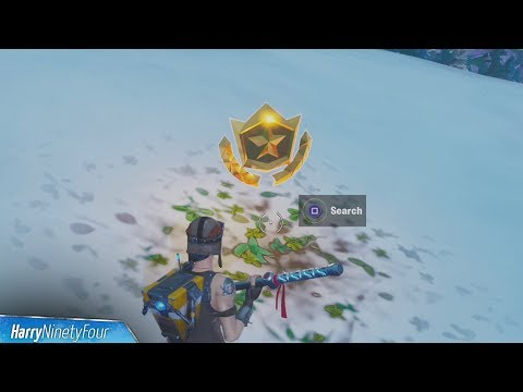 Search Between Basement Film Camera, Snowy Stone Head And A Flashy Gold Big Rig Location - Fortnite