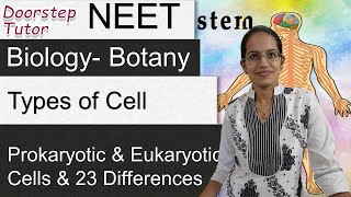 Types of Cell: Prokaryotic and Eukaryotic Cells and 23 Differences  - NEET / AIIMS / MCAT