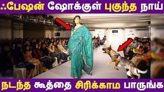 ஃபேஷன் ஷோக்குள் புகுந்த நாய் நடந்த கூத்தை சிரிக்காம பாருங்க | Tamil News | Tamil Seithigal