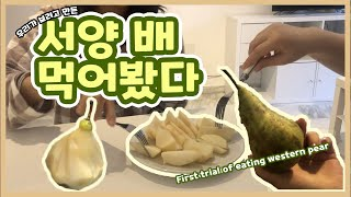 [ENG/ESP] 스페인 배 먹어 본 후기 / Prim…