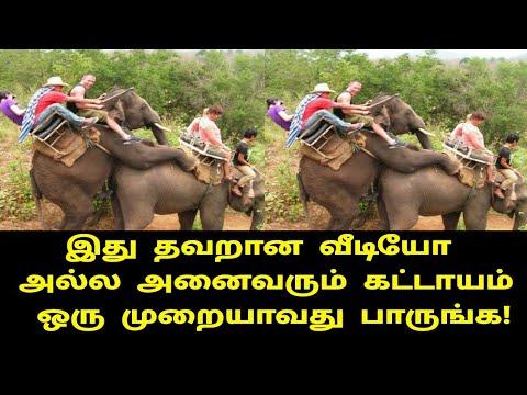 ஒரு-நிமிடம்-ஒதுக்கி-இந்த-வீடியோவை-பாருங்கள்!- -tamil-movies- -tamil-cinema- -kollywood- -tamil