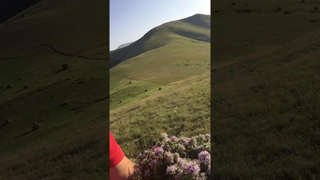 Молокане в азербайджане кедабекский район ивановка фото 42-616