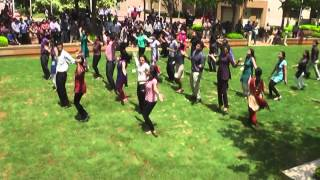 IBM India HR Flash Mob 23052013 Official Version