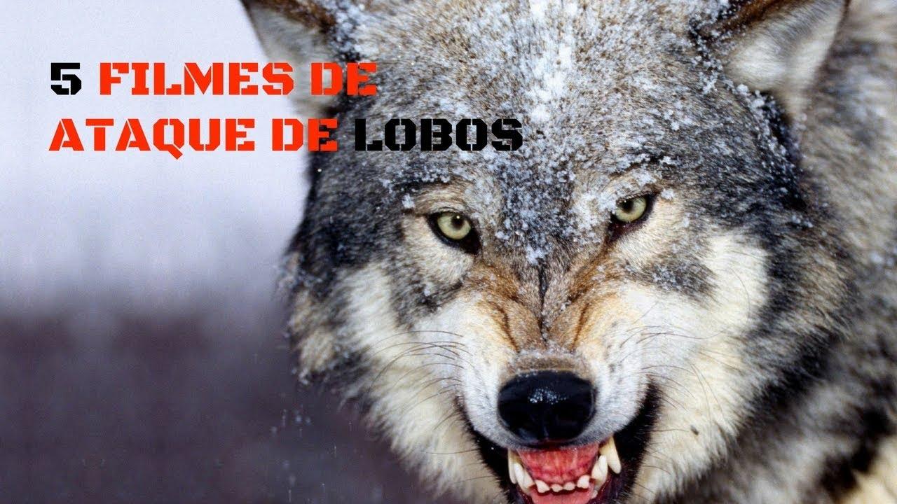5 Filmes De Ataque De Lobos Que Voce Precisa Assistir Youtube