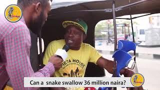 Man witness snake swallowing money.
