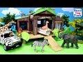 Safari Jungle Wild Animals Care Playset - Fun Animals Toys For Kids