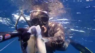 Cemal Karakuş Zıpkınla Balık Avları Belgeseli