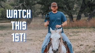 Buying a HORSE f๐r the FIRST Time? Watch this FIRST!