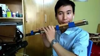 Gặp nhau giữa rừng mơ - Mèo tàu F ghép với sáo C5 || Cao Trí Minh