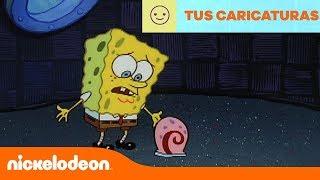 Bob Esponja   Celoso de Patricio   Latinoamérica   Nickelodeon en Español