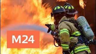 Два вертолета привлекли к тушению пожара в Мытищах - Москва 24
