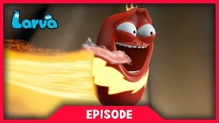 LARVA - THUNDER RED | Cartoon Movie | Cartoons For Children | Larva Cartoon | LARVA Official