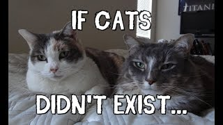 If Cats Didn't Exist... thumbnail