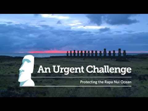 Easter Island Environmental Opportunity: Protecting Rapa Nui's Ocean