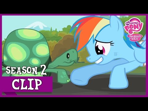 Tank Saves Rainbow Dash (May The Best Pet Win!) | MLP: FiM [HD]