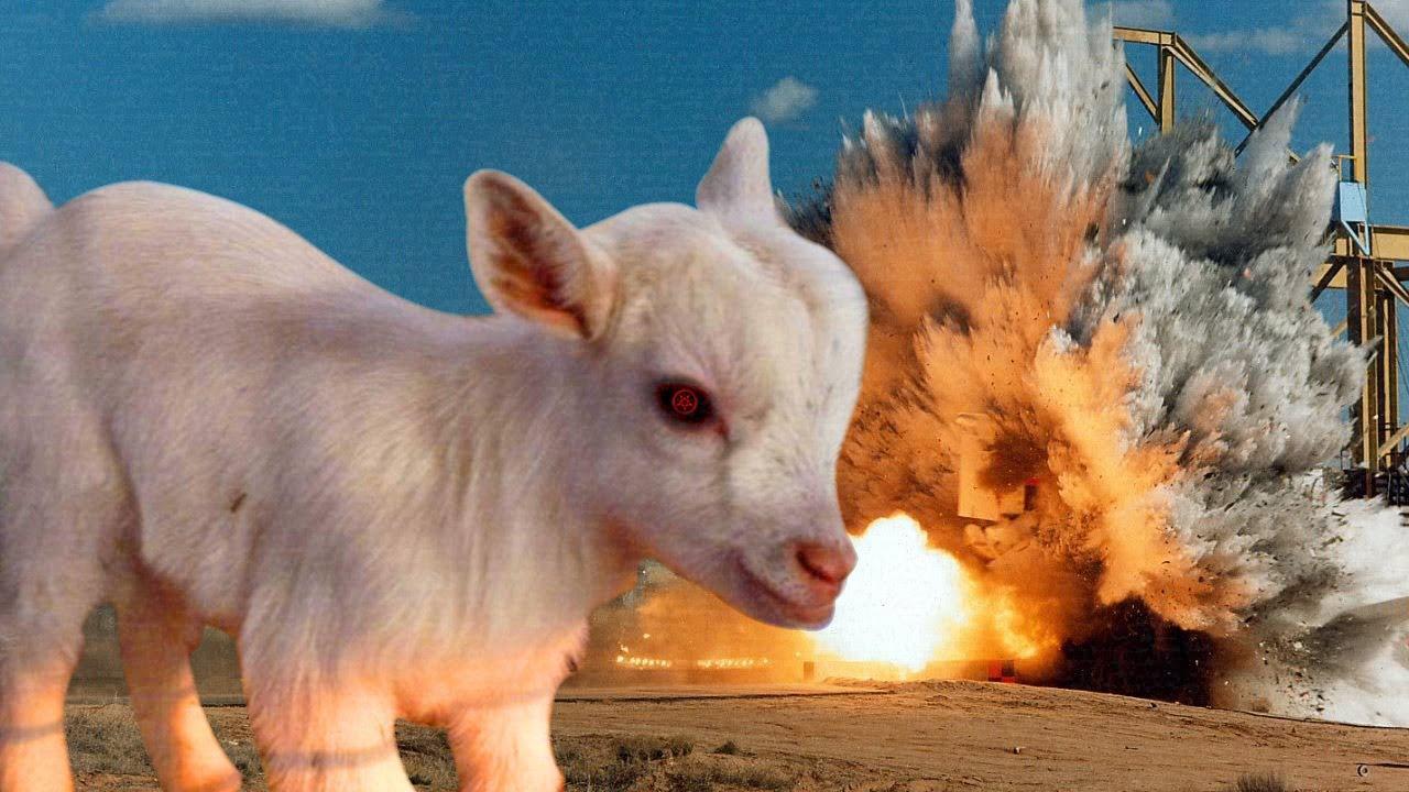 Evil Goat Goat Simulator Youtube
