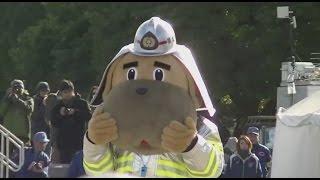 横浜市消防局のマスコットキャラクター『ハマくん』 昨今のゆるキャラブームに便乗した訳ではなく、誕生は昭和49年とかなり前。 Check out my...