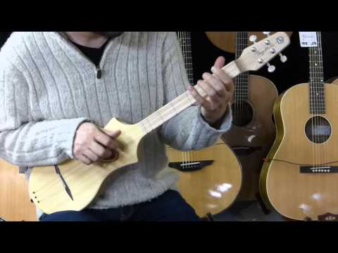 Seagull Merlin Dulcimer acoustic folk instrument demo