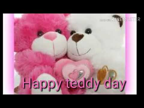 Happy Teddy Day Wallpaper Video Images What's App Stetus Video