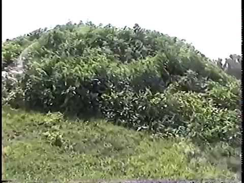 Angel Mounds walking tour-Mississippian prehistoric village.-old VHS video !